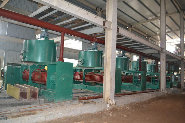 cottonseed oil manufacturing process and machinery